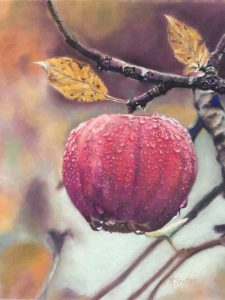 apple pastel drawing