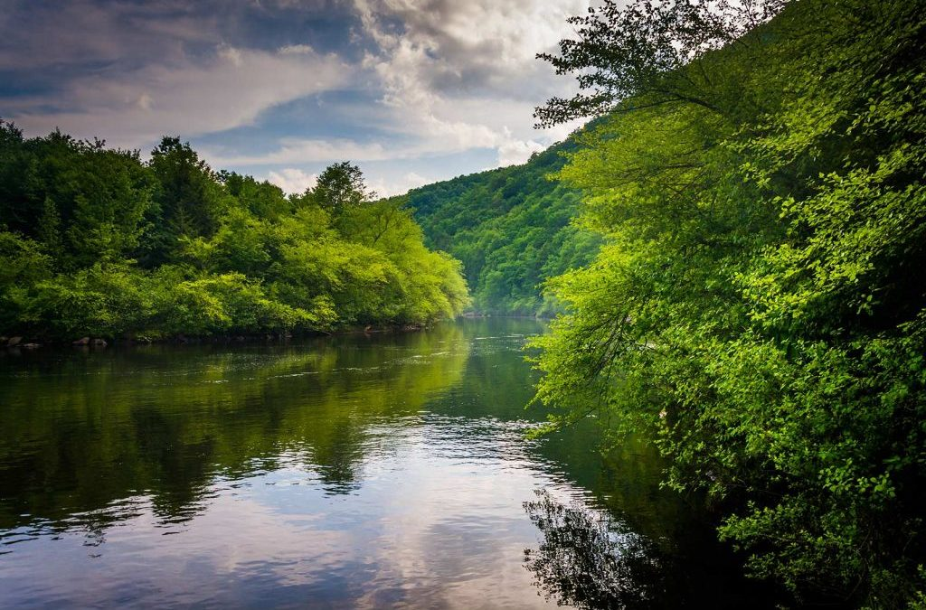 Lehigh River Watershed Fund Launched