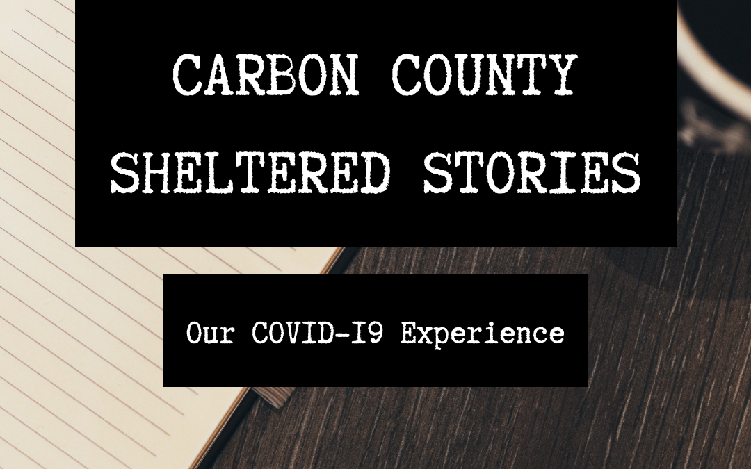 Celebrating Carbon County's Libraries!